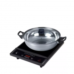 Induction Cooker with Pot